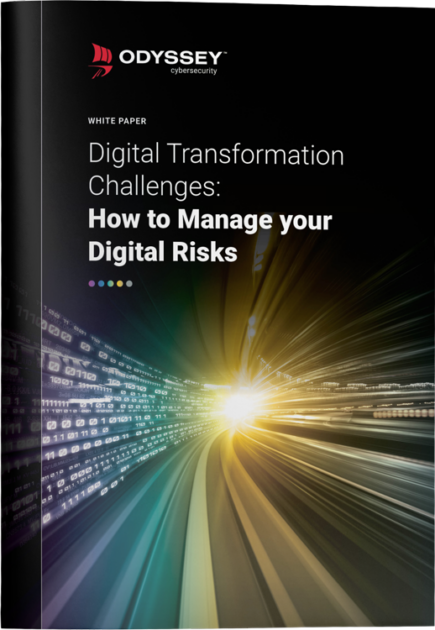 How-to-Manage-your-Digital-Risks-White-Paper-Cover-3